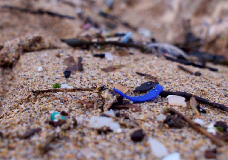 La Méditerranée détient le record de déchets marins en Europe
