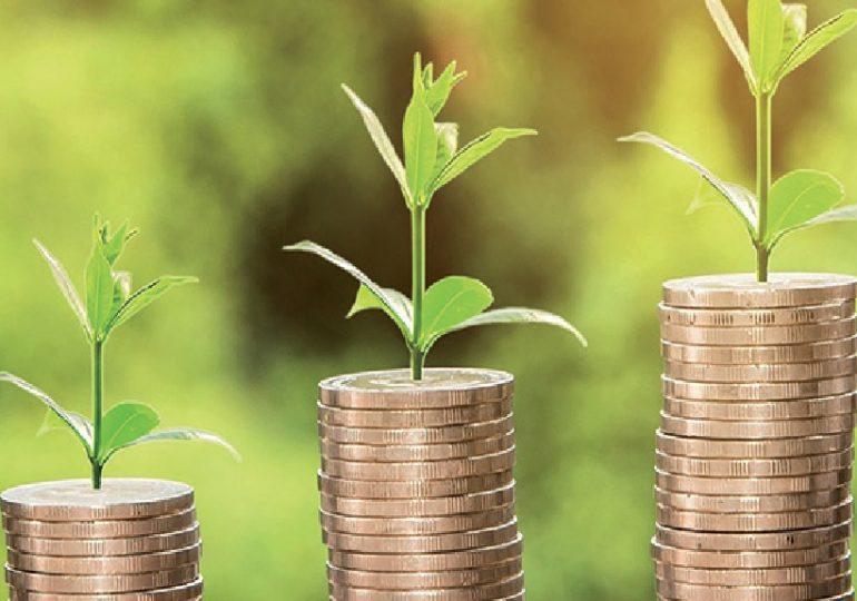 L'économie est la solution à l'écologie