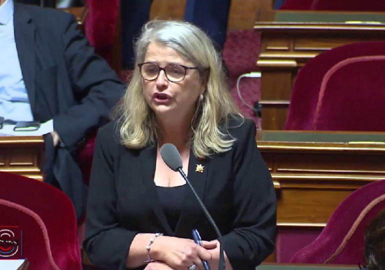 À l'origine du projet de création d'un fonds de solidarité en faveur des Français de l'étranger, Joëlle Garriaud-Maylam répond aux questions des Français.press