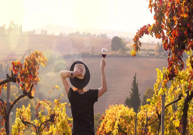 WorldWine Women : voyage à la rencontre des vigneronnes en Europe