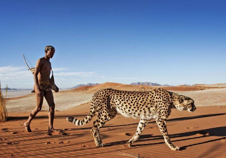 Choisir son expatriation :  direction la Namibie avec Camille
